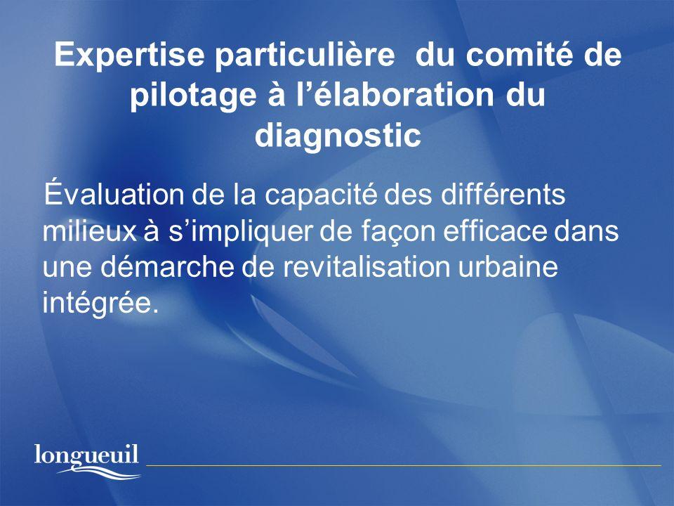 Expertise particulière du comité de pilotage à lélaboration du diagnostic Évaluation de la capacité des différents milieux à simpliquer de façon effic