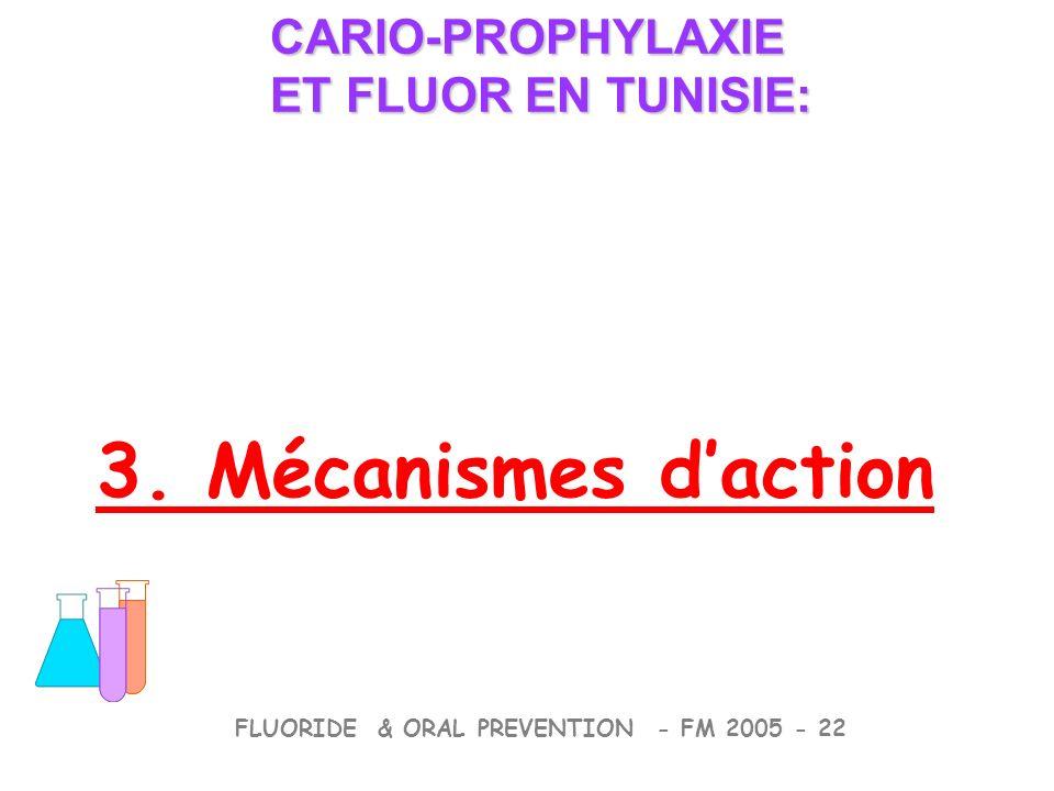 3. Mécanismes daction CARIO-PROPHYLAXIE ET FLUOR EN TUNISIE: CARIO-PROPHYLAXIE ET FLUOR EN TUNISIE: FLUORIDE & ORAL PREVENTION - FM 2005 - 22