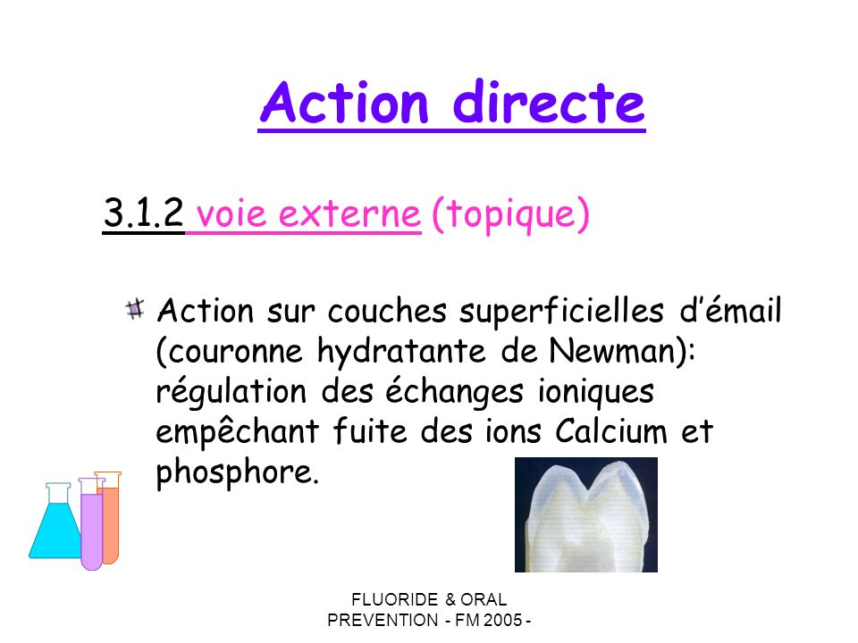 FLUORIDE & ORAL PREVENTION - FM 2005 - Action sur couches superficielles démail (couronne hydratante de Newman): régulation des échanges ioniques empêchant fuite des ions Calcium et phosphore.
