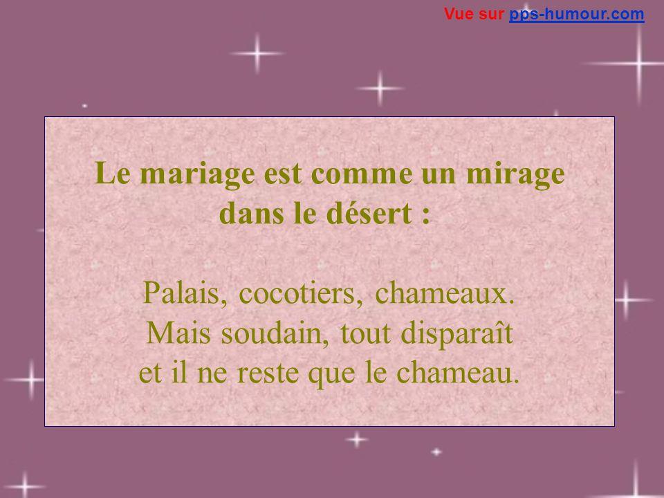 Le mariage est comme un mirage dans le désert : Palais, cocotiers, chameaux. Mais soudain, tout disparaît et il ne reste que le chameau. Vue sur pps-h