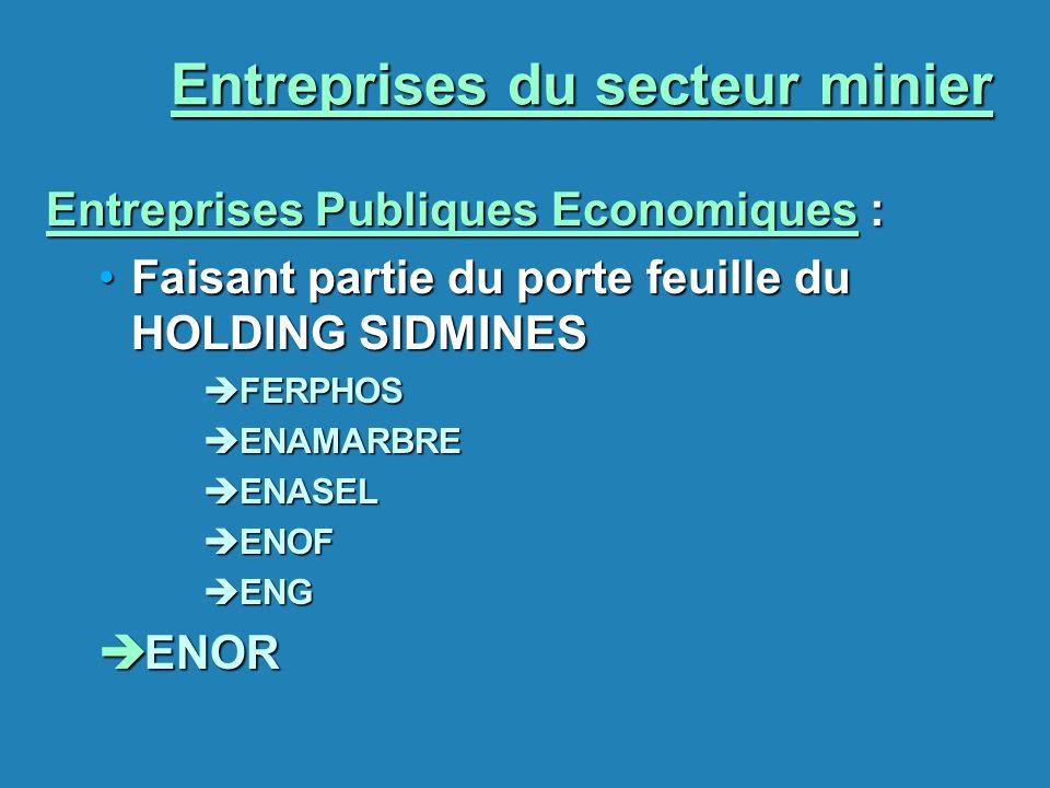 Entreprises du secteur minier Entreprises Publiques Economiques : Faisant partie du porte feuille du HOLDING SIDMINESFaisant partie du porte feuille d