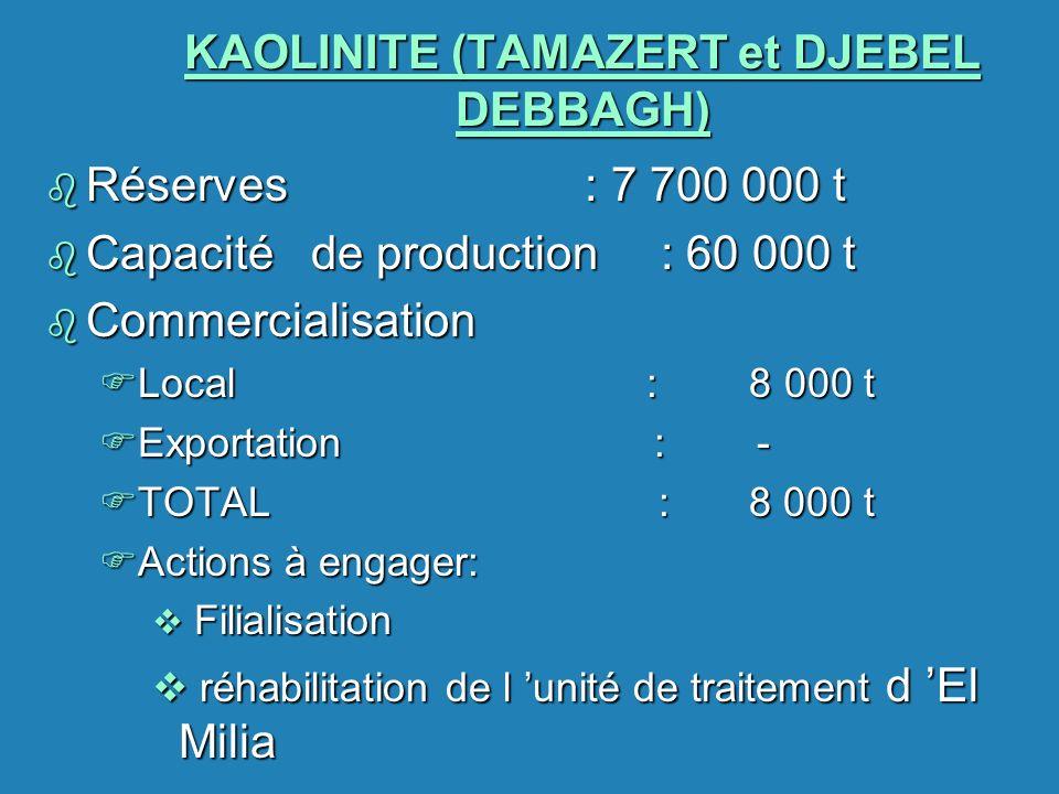 KAOLINITE (TAMAZERT et DJEBEL DEBBAGH) b Réserves : 7 700 000 t b Capacité de production : 60 000 t b Commercialisation FLocal : 8 000 t FExportation
