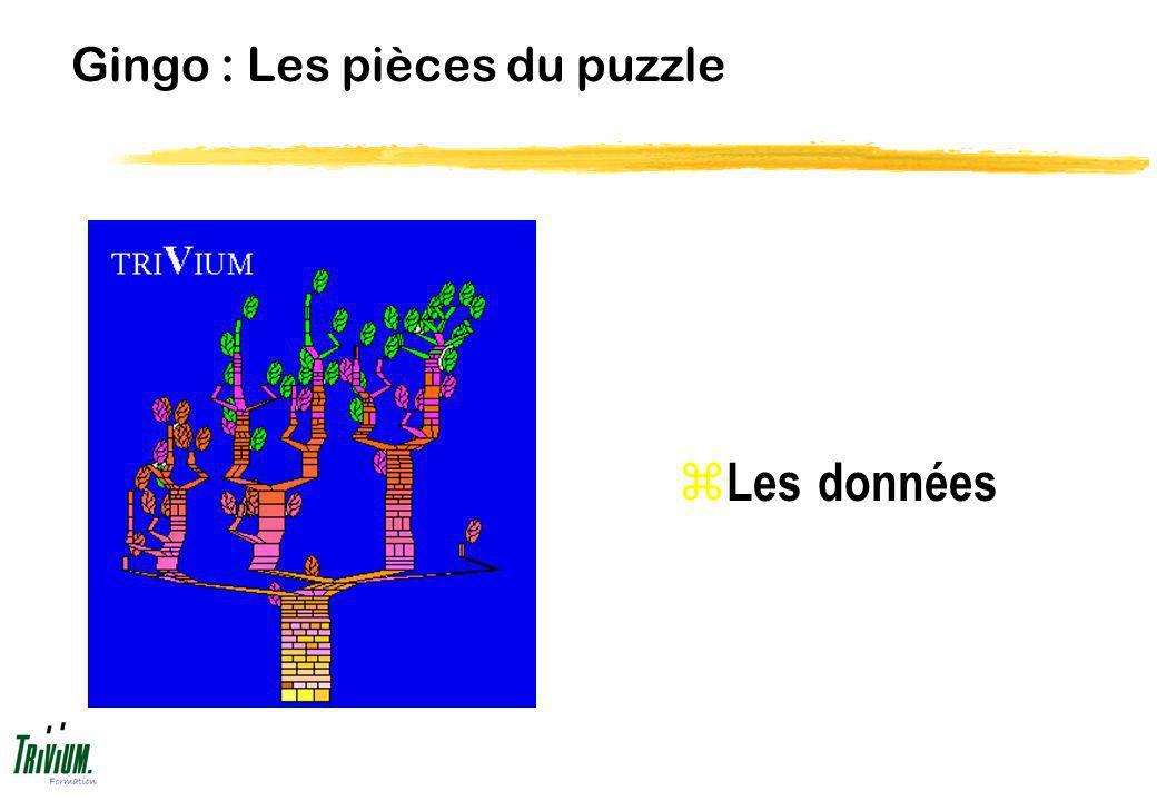 Gingo : Les pièces du puzzle z Les données