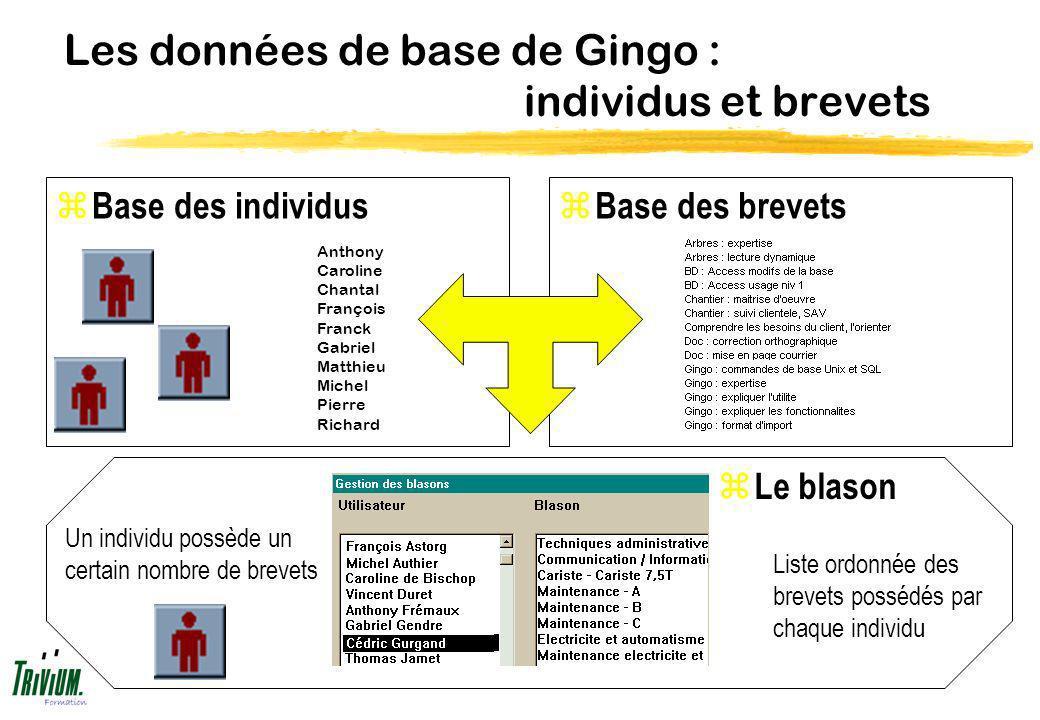 Les données de base de Gingo : individus et brevets z Base des individus Liste ordonnée des brevets possédés par chaque individu Un individu possède u