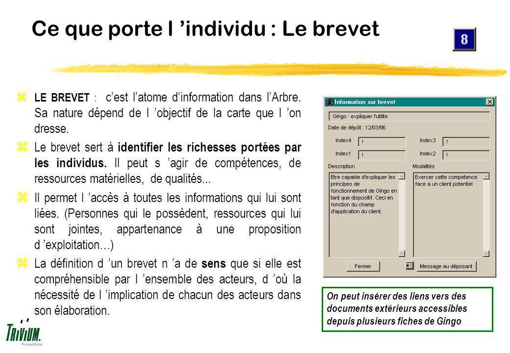 Ce que porte l individu : Le brevet z LE BREVET : cest latome dinformation dans lArbre. Sa nature dépend de l objectif de la carte que l on dresse. zL