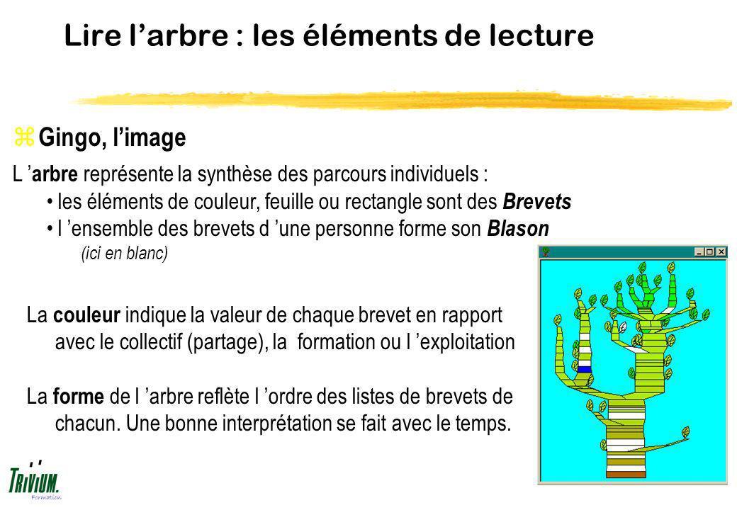 Lire larbre : les éléments de lecture z Gingo, limage La couleur indique la valeur de chaque brevet en rapport avec le collectif (partage), la formati