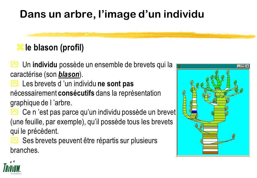Dans un arbre, limage dun individu z le blason (profil) y Un individu possède un ensemble de brevets qui la caractérise (son blason ). y Les brevets d