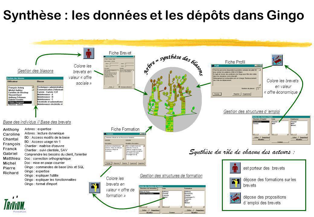 Synthèse : les données et les dépôts dans Gingo Anthony Caroline Chantal François Franck Gabriel Matthieu Michel Pierre Richard Base des individus //