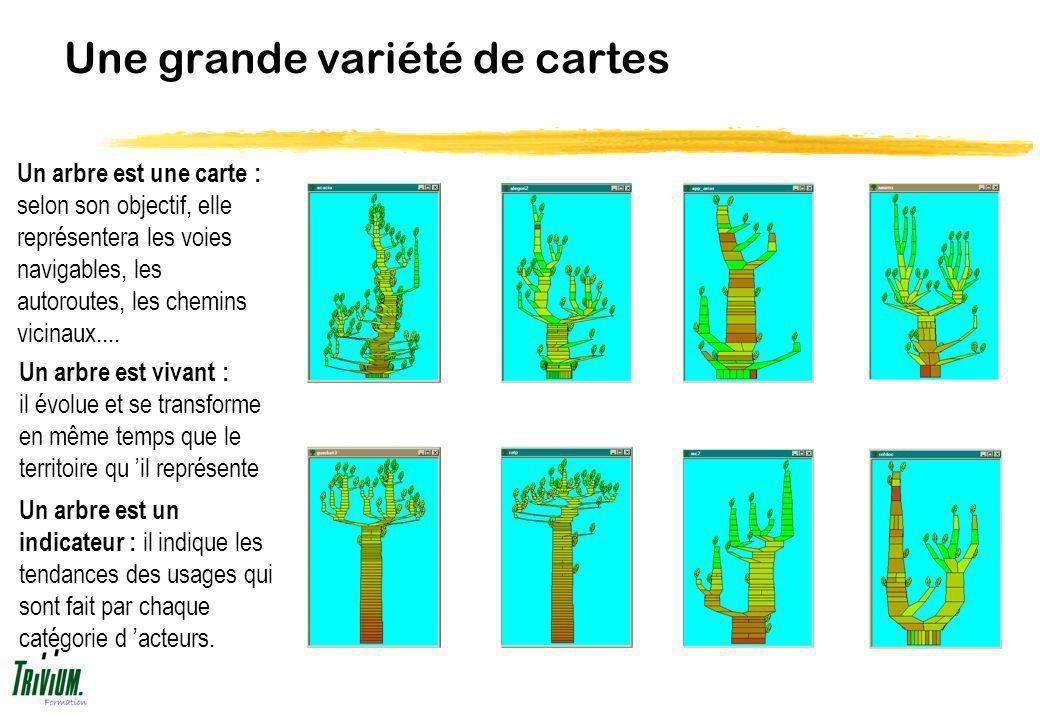 Une grande variété de cartes Un arbre est une carte : selon son objectif, elle représentera les voies navigables, les autoroutes, les chemins vicinaux