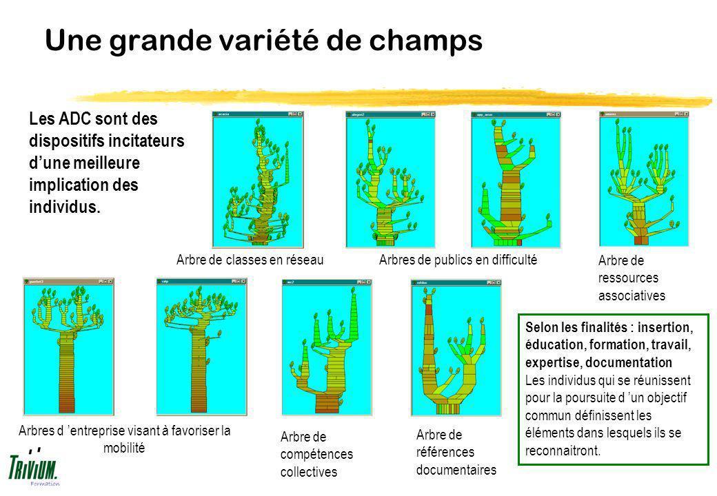 Une grande variété de champs Les ADC sont des dispositifs incitateurs dune meilleure implication des individus. Selon les finalités : insertion, éduca