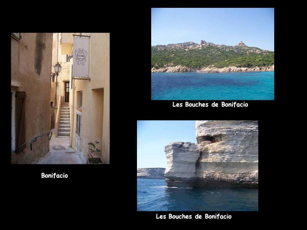 Bonifacio Les Bouches de Bonifacio