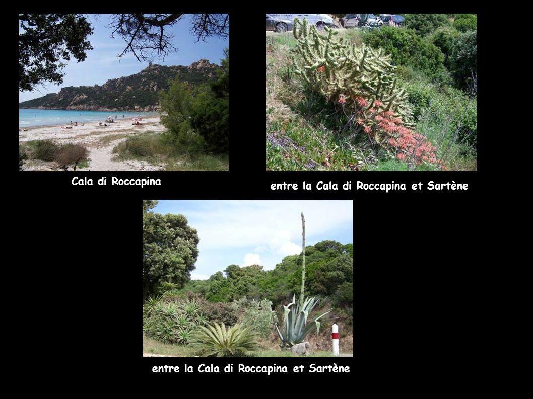 Cala di Roccapina entre la Cala di Roccapina et Sartène