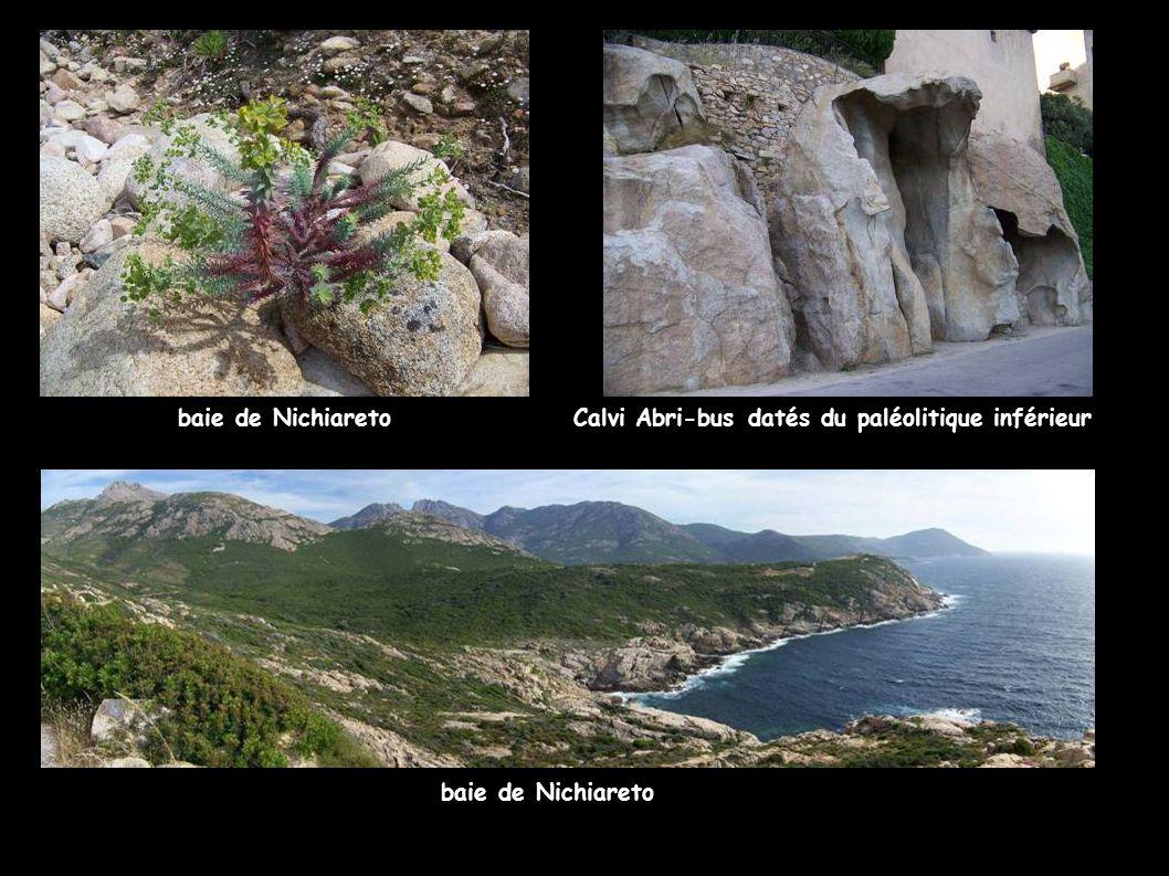baie de NichiaretoCalvi Abri-bus datés du paléolitique inférieur baie de Nichiareto