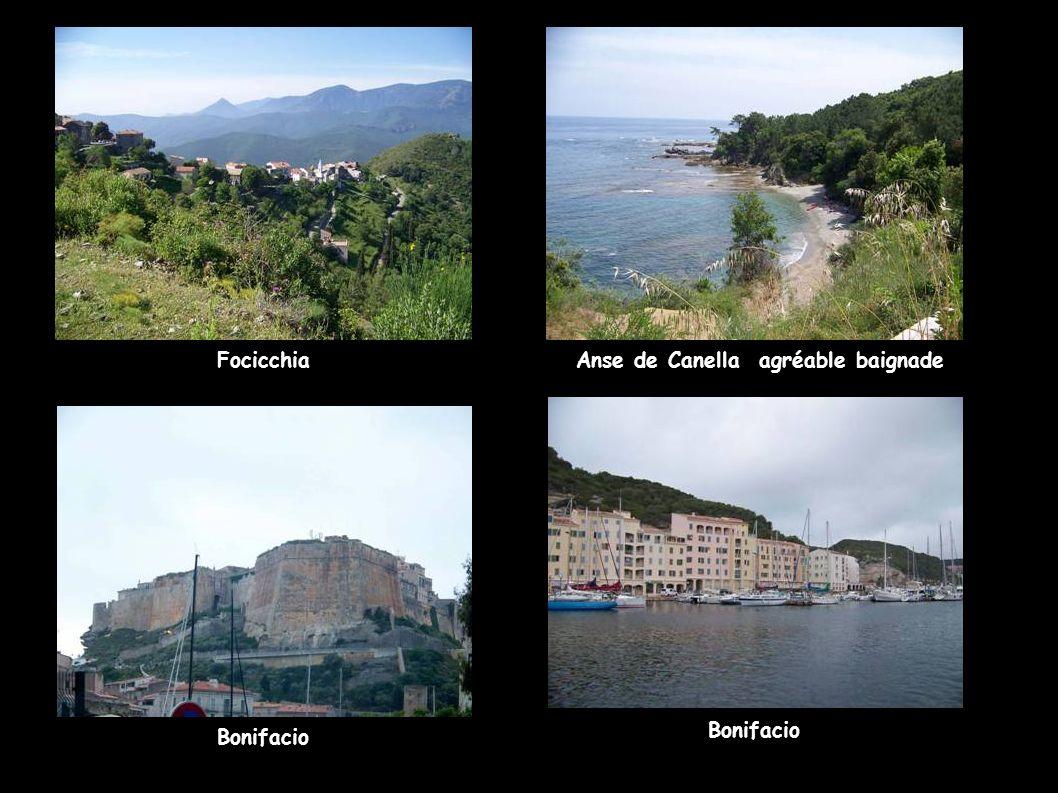 FocicchiaAnse de Canella agréable baignade Bonifacio