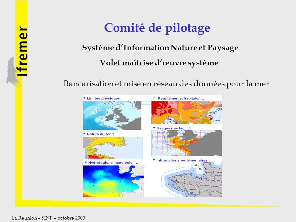 La Réunion – SINP – octobre 2009 Comité de pilotage Système dInformation Nature et Paysage Volet maîtrise dœuvre système Bancarisation et mise en rése