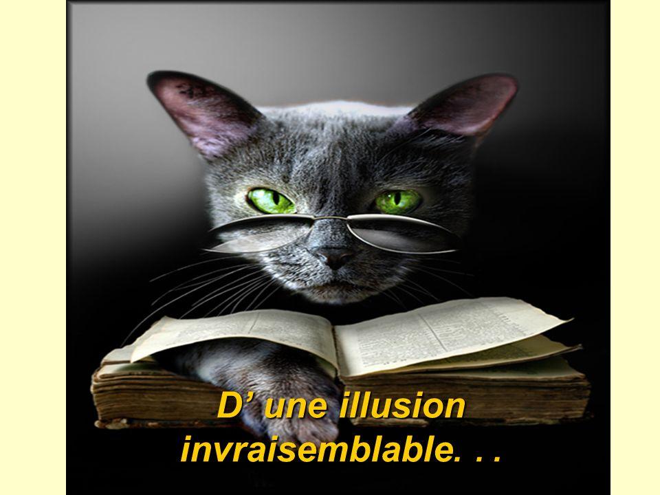 D une illusion invraisemblable...
