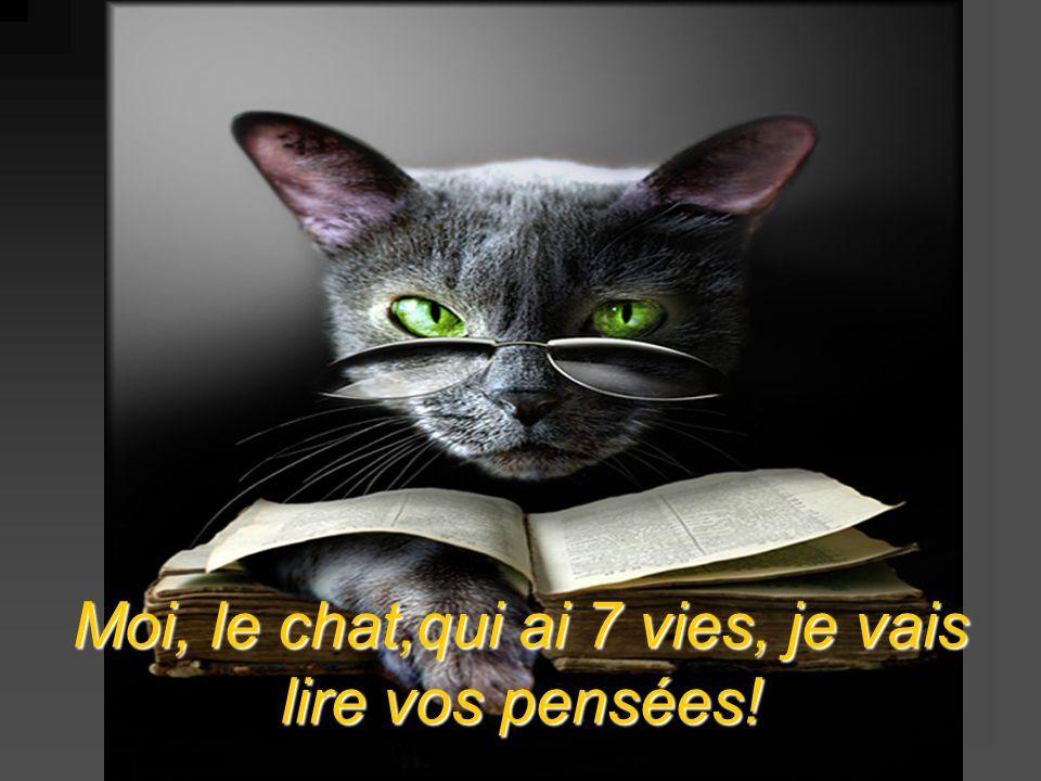 Moi, le chat,qui ai 7 vies, je vais lire vos pensées!
