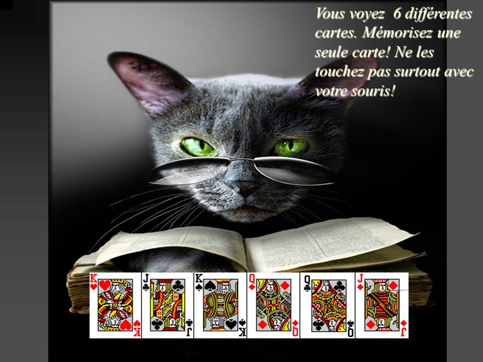 Vous voyez 6 différentes cartes. Mémorisez une seule carte! Ne les touchez pas surtout avec votre souris!