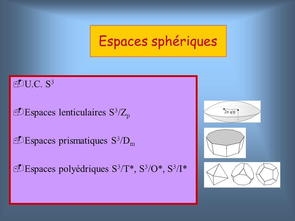 U.C. S 3 Espaces lenticulaires S 3 /Z p Espaces prismatiques S 3 /D m Espaces polyédriques S 3 /T*, S 3 /O*, S 3 /I*