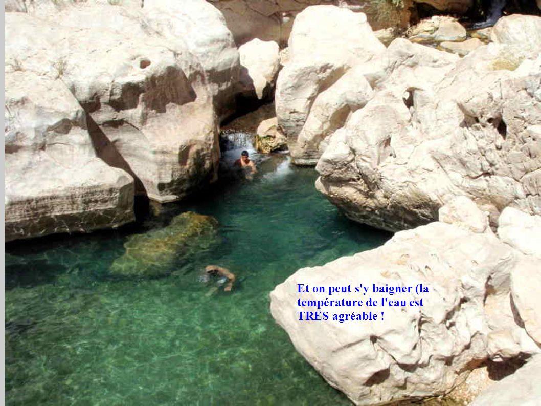 Et on peut s'y baigner (la température de l'eau est TRES agréable !