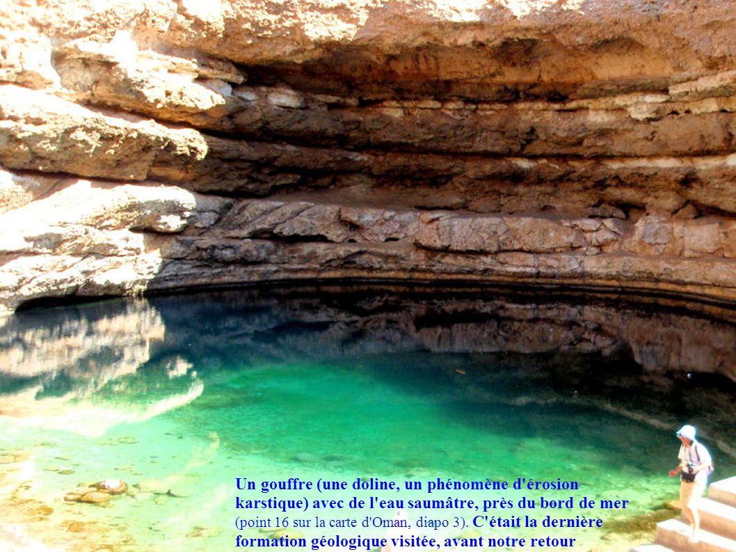 Un gouffre (une doline, un phénomène d érosion karstique) avec de l eau saumâtre, près du bord de mer (point 16 sur la carte d Oman, diapo 3).