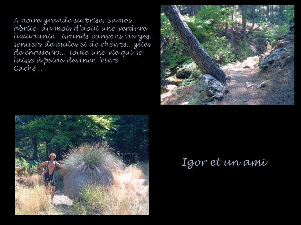 Igor et un ami A notre grande surprise, Samos abrite au mois daoût une verdure luxuriante. Grands canyons vierges, sentiers de mules et de chèvres…gît