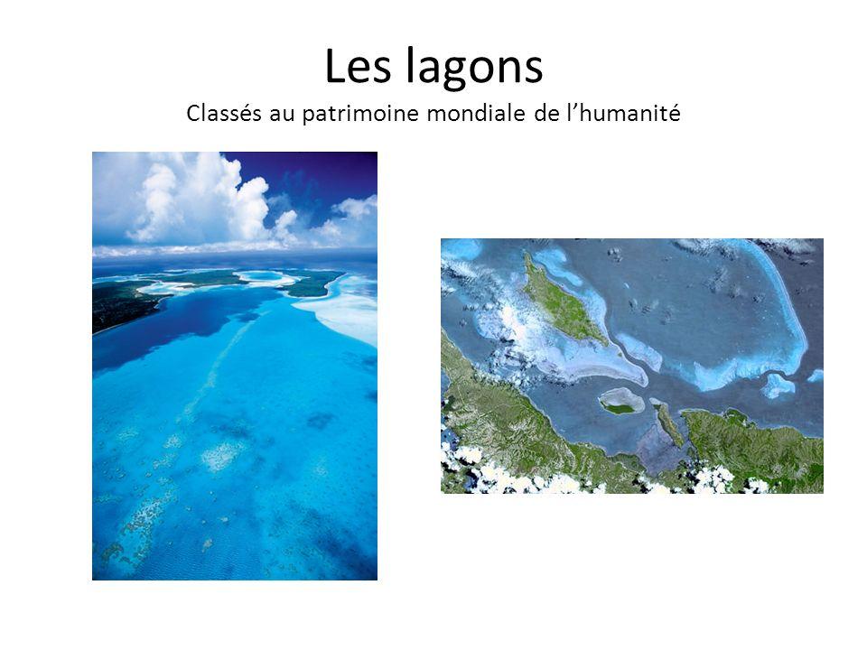 Les lagons Classés au patrimoine mondiale de lhumanité