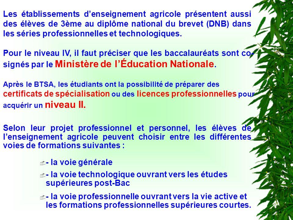 Après le BTSA, les étudiants ont la possibilité de préparer des certificats de spécialisation ou des licences professionnelles pour acquérir un niveau II.