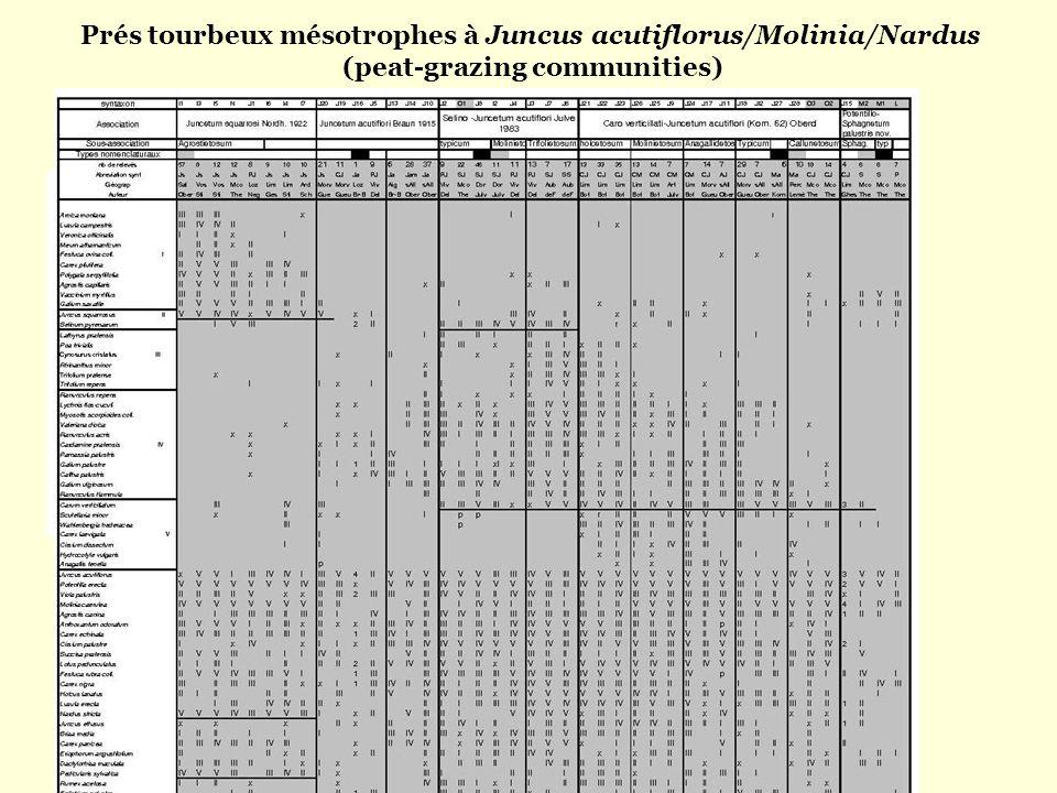 Prés tourbeux mésotrophes à Juncus acutiflorus/Molinia/Nardus (peat-grazing communities) 85 relevés 17 syntaxons élémentaires 6 GTD 4 associations vég