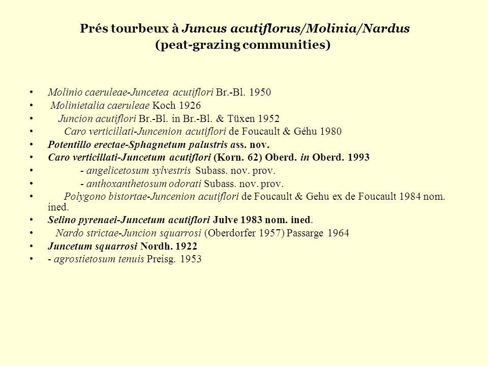 Prés tourbeux à Juncus acutiflorus/Molinia/Nardus (peat-grazing communities) Molinio caeruleae-Juncetea acutiflori Br.-Bl. 1950 Molinietalia caeruleae