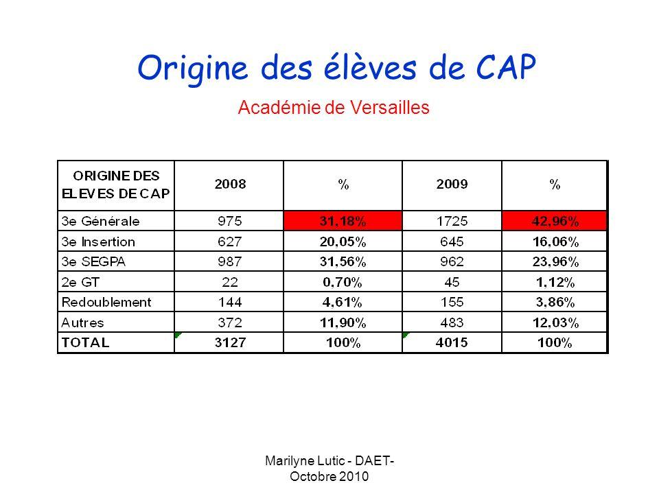 Marilyne Lutic - DAET- Octobre 2010 Origine des élèves de CAP Département des Yvelines Département de lEssonne