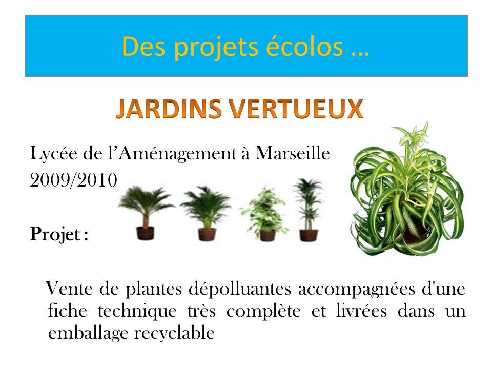 Lycée de lAménagement à Marseille 2009/2010 Projet : Vente de plantes dépolluantes accompagnées d'une fiche technique très complète et livrées dans un