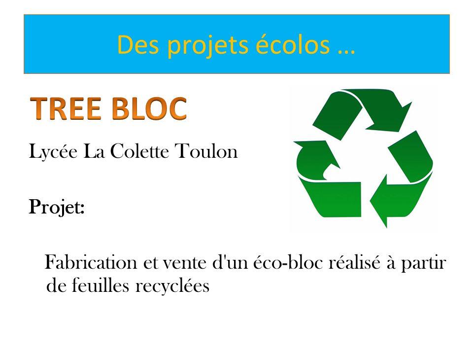 Des projets écolos … Lycée La Colette Toulon Projet: Fabrication et vente d'un éco-bloc réalisé à partir de feuilles recyclées