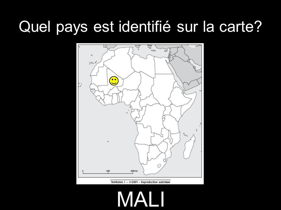 Quel pays est identifié sur la carte? MALI