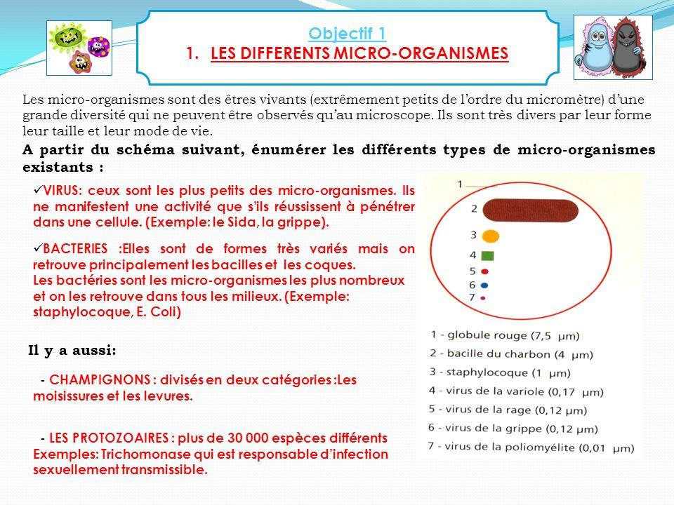 5 Objectif 1 1.LES DIFFERENTS MICRO-ORGANISMES A partir du schéma suivant, énumérer les différents types de micro-organismes existants : Les micro-org