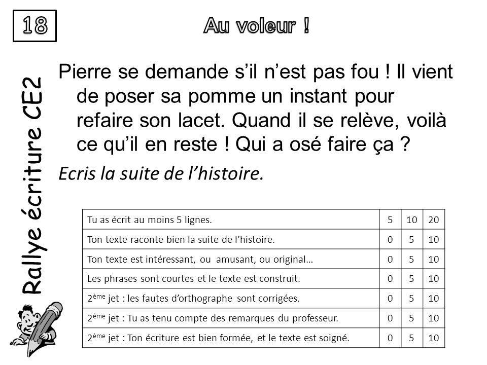 Rallye écriture CE2 Pierre se demande sil nest pas fou .