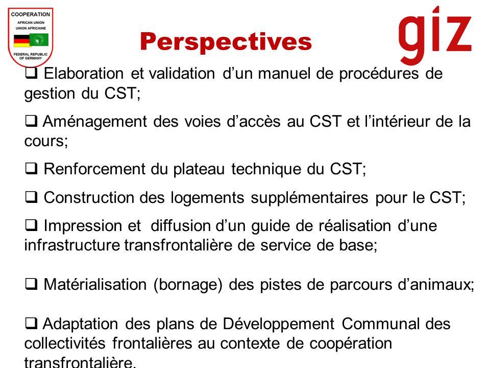 Perspectives Elaboration et validation dun manuel de procédures de gestion du CST; Aménagement des voies daccès au CST et lintérieur de la cours; Renf