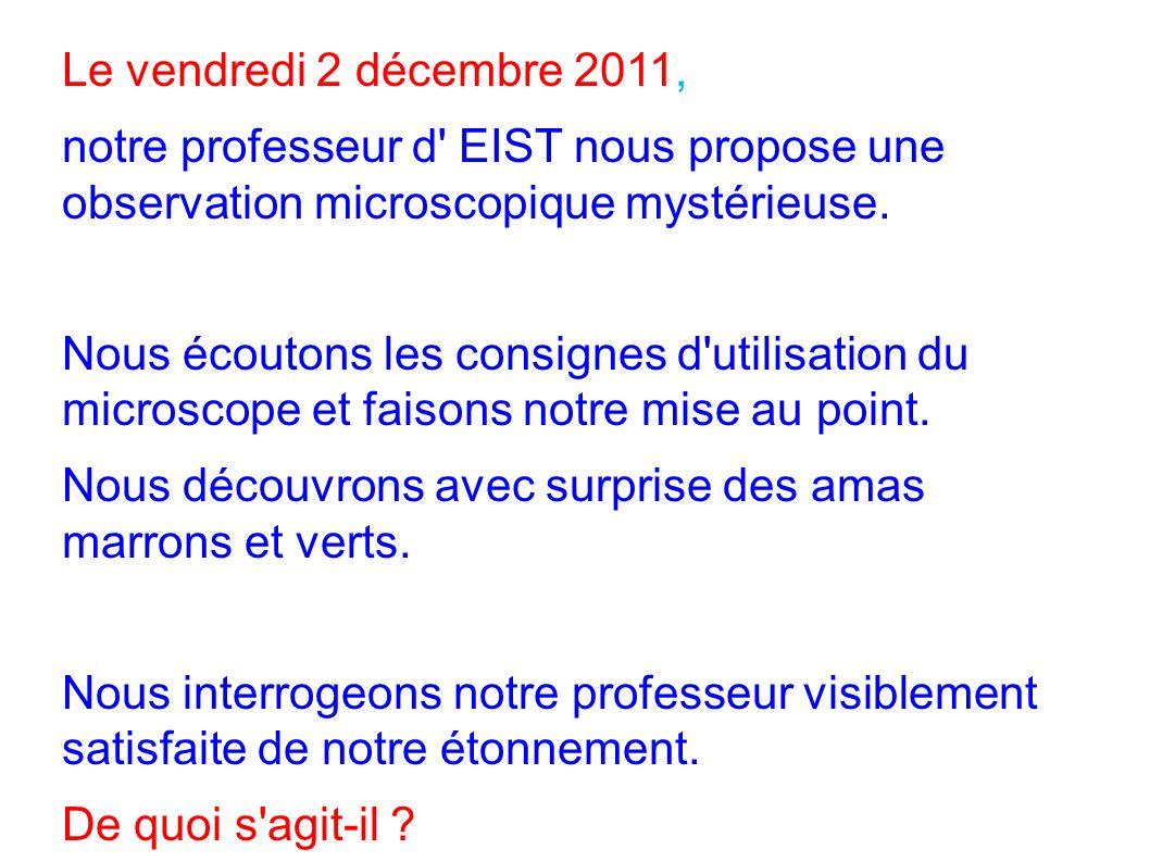 Le vendredi 2 décembre 2011, notre professeur d' EIST nous propose une observation microscopique mystérieuse. Nous écoutons les consignes d'utilisatio