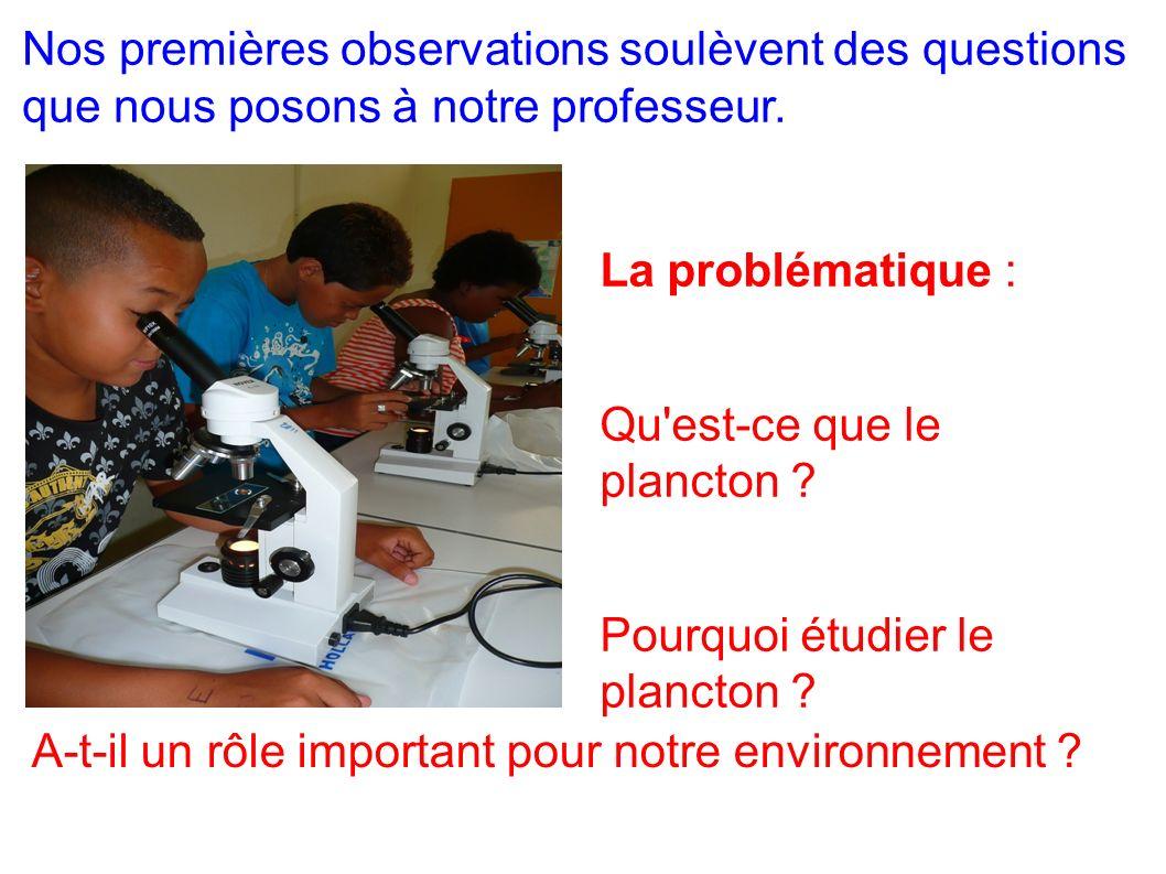 La problématique : Qu'est-ce que le plancton ? Pourquoi étudier le plancton ? Nos premières observations soulèvent des questions que nous posons à not
