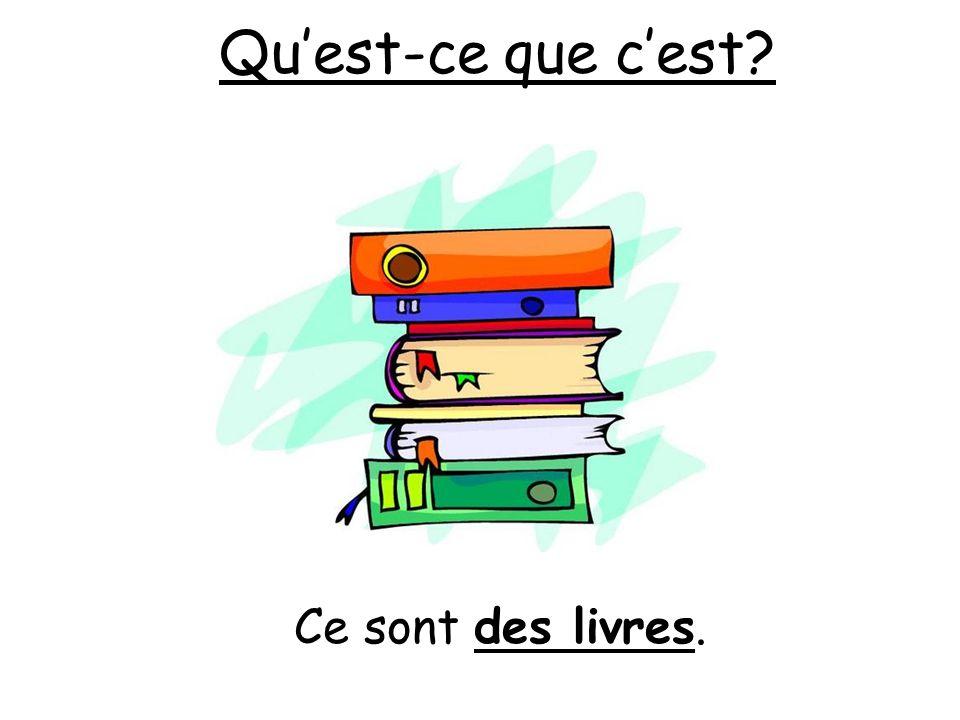 Quest-ce que cest? Ce sont des livres.