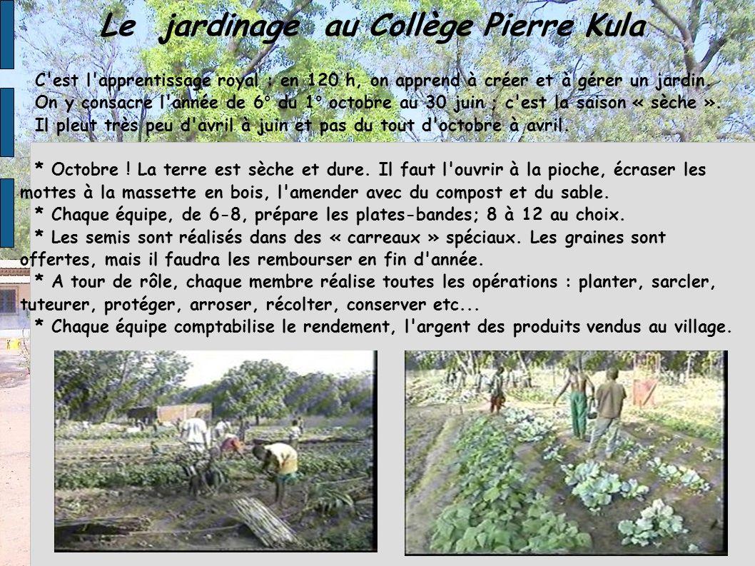Le jardinage au Collège Pierre Kula C'est l'apprentissage royal : en 120 h, on apprend à créer et à gérer un jardin. On y consacre l'année de 6° du 1°