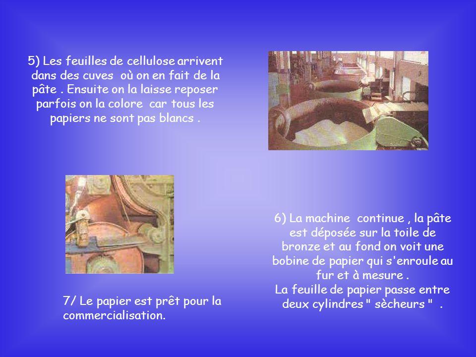 5) Les feuilles de cellulose arrivent dans des cuves où on en fait de la pâte.