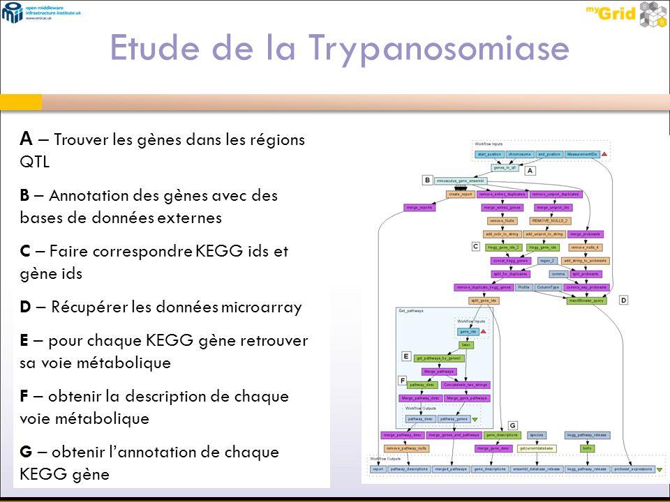 A – Trouver les gènes dans les régions QTL B – Annotation des gènes avec des bases de données externes C – Faire correspondre KEGG ids et gène ids D –
