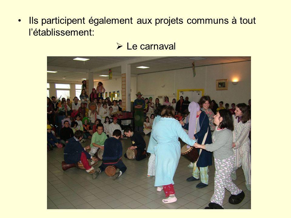 Ils participent également aux projets communs à tout létablissement: Le carnaval
