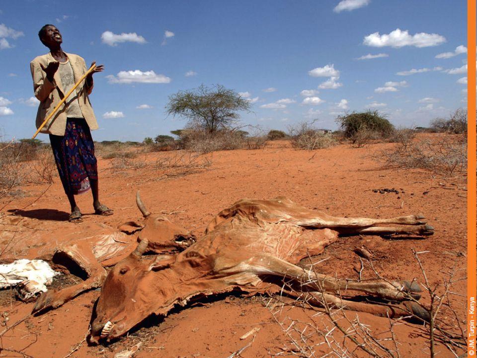 « En Afrique sahélienne, on assiste depuis les années 1970 à des épisodes récurrents de sécheresse et dinondations avec pour conséquences, des crises alimentaires cycliques et persistantes ainsi que des pénuries deau potable et dirrigation.