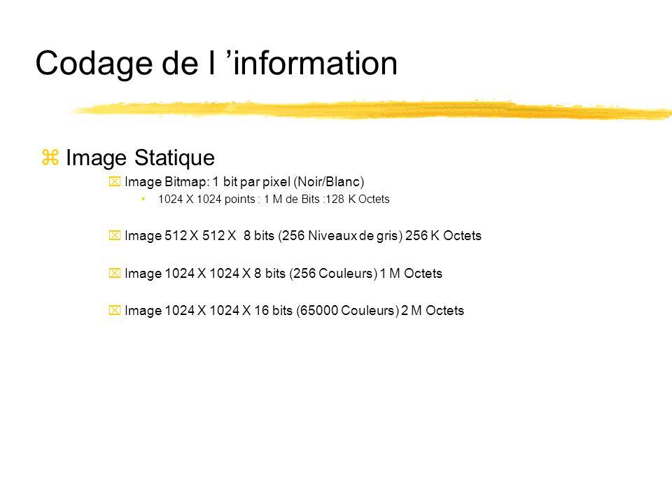 Codage de l information zImage Statique xImage Bitmap: 1 bit par pixel (Noir/Blanc) 1024 X 1024 points : 1 M de Bits :128 K Octets xImage 512 X 512 X