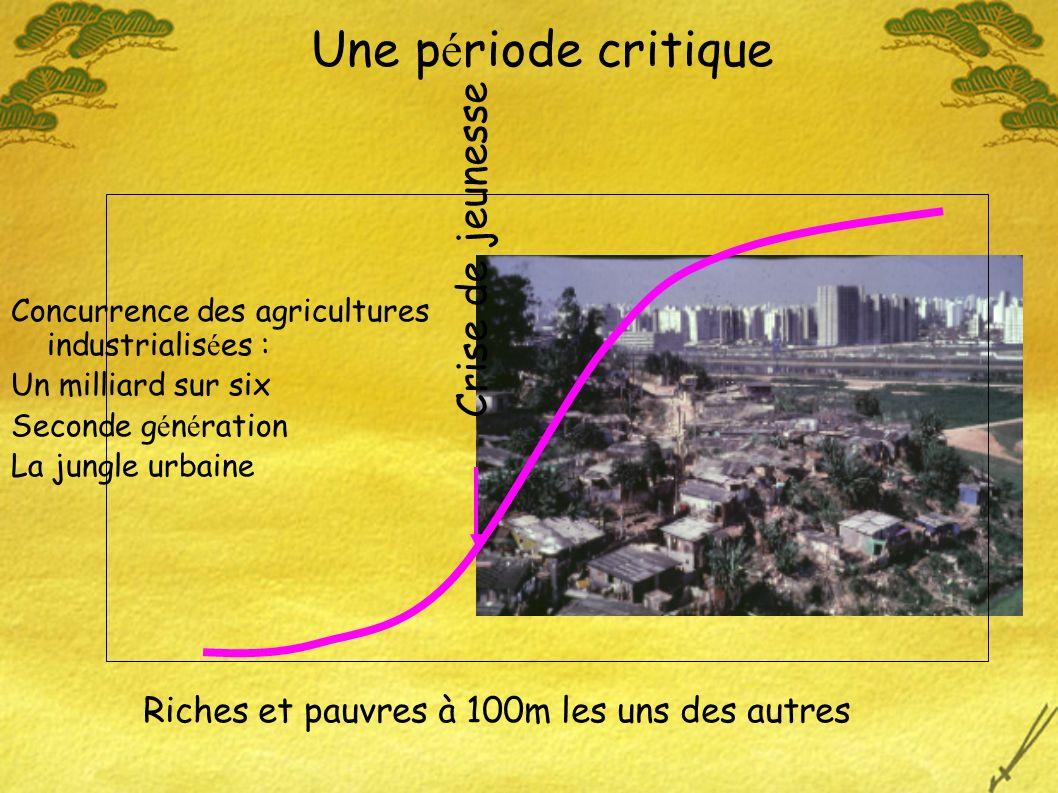 Concurrence des agricultures industrialis é es : Un milliard sur six Seconde g é n é ration La jungle urbaine Riches et pauvres à 100m les uns des autres Une p é riode critique Crise de jeunesse
