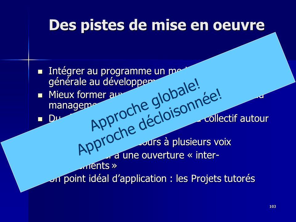 103 Des pistes de mise en oeuvre Intégrer au programme un module dintroduction générale au développement durable Intégrer au programme un module dintr