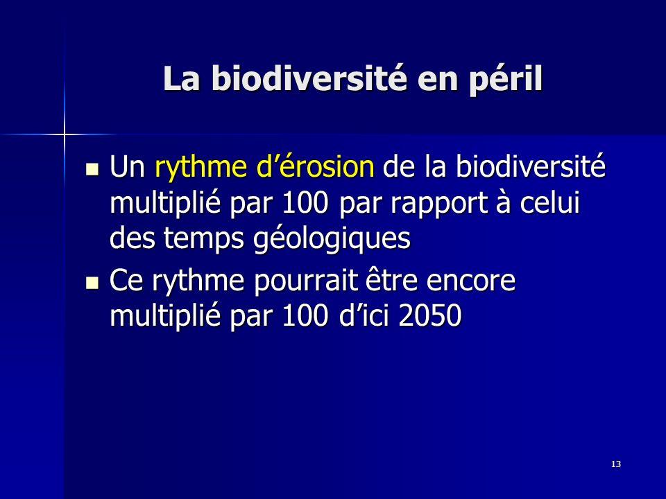 13 La biodiversité en péril Un rythme dérosion de la biodiversité multiplié par 100 par rapport à celui des temps géologiques Un rythme dérosion de la biodiversité multiplié par 100 par rapport à celui des temps géologiques Ce rythme pourrait être encore multiplié par 100 dici 2050 Ce rythme pourrait être encore multiplié par 100 dici 2050