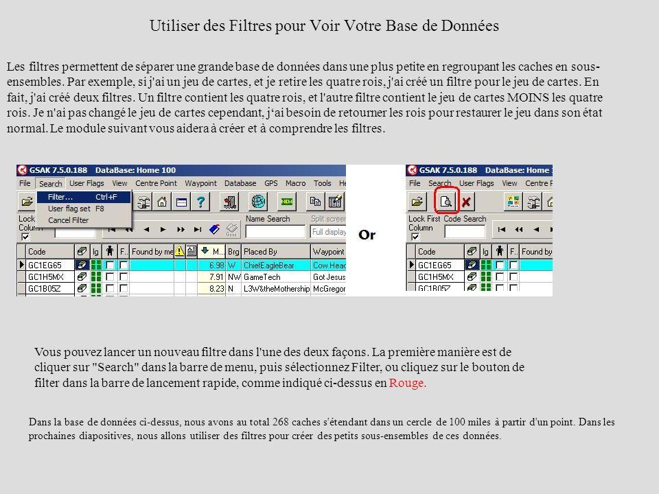 Utiliser des Filtres pour Voir Votre Base de Données Les filtres permettent de séparer une grande base de données dans une plus petite en regroupant l